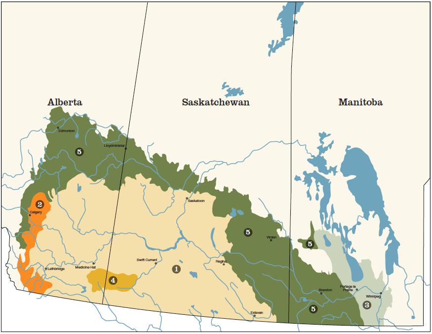 Carte Canada Manitoba.Prairie Types Prairie Pollination